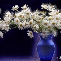著名万博客户端下载官网艺术家石广智金像奖作品